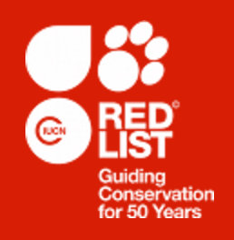 red list 250
